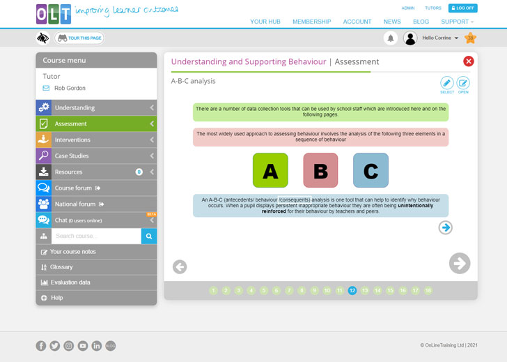 Screenshot from Assessment page 12